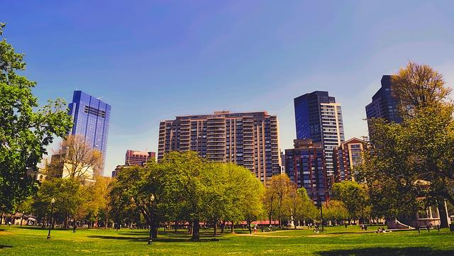 View of the Boston neighborhood with parks and skyscrapers.