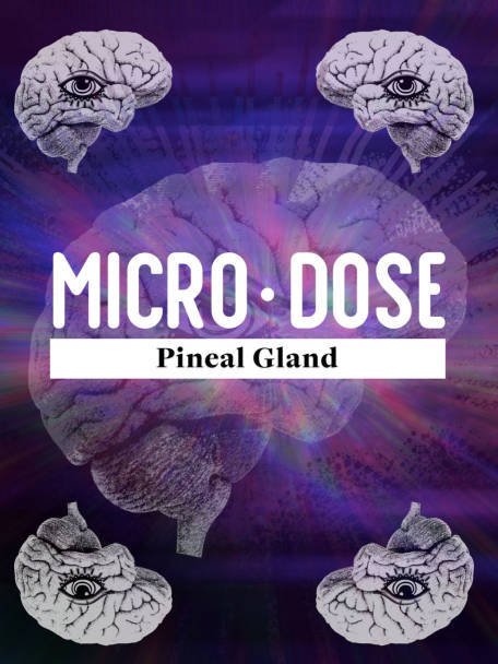 MICRODOSE   SECRETS OF THE PINEAL GLAND