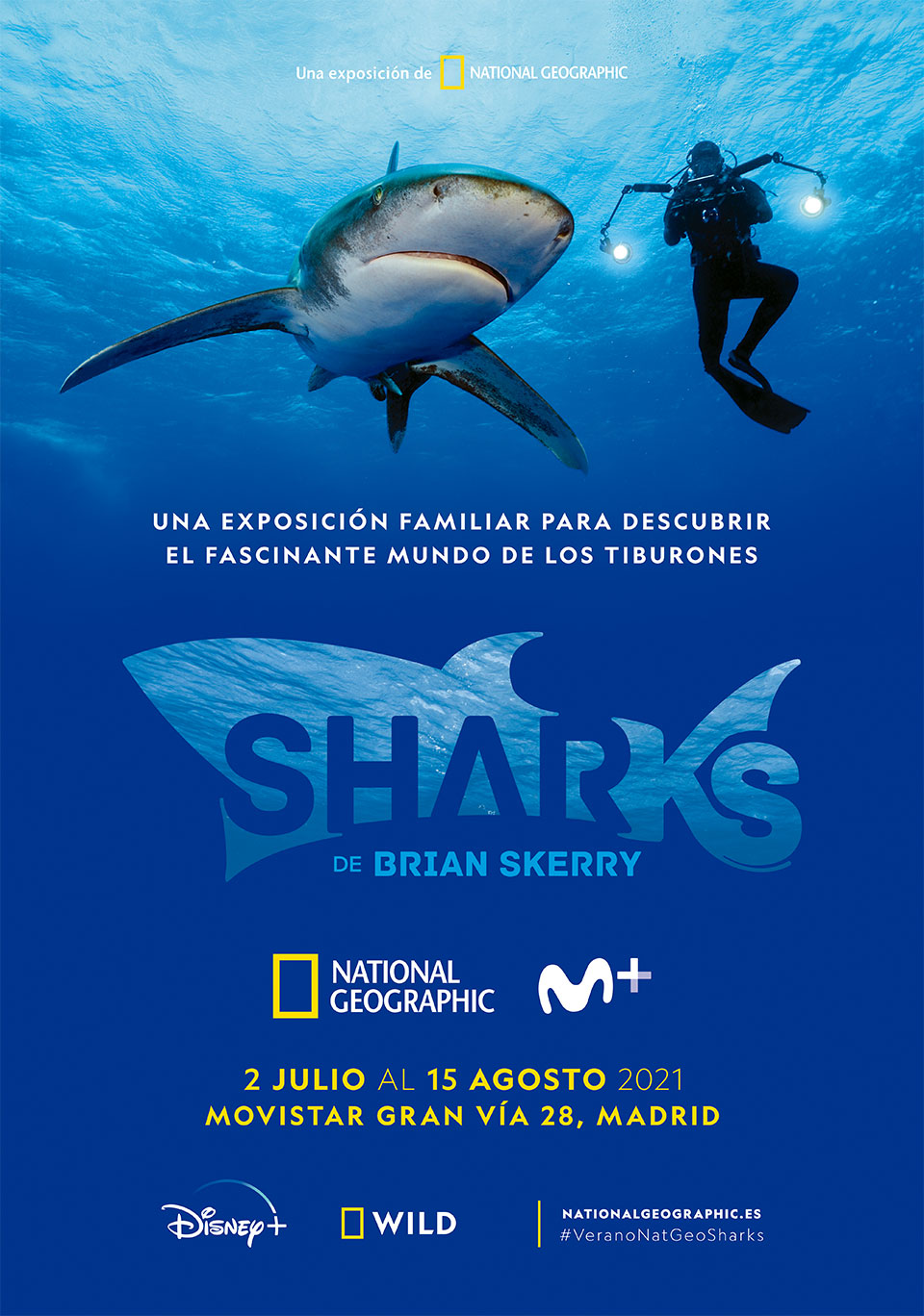 UNA EXPOSICIÓN FAMILIAR PARA DESCUBRIR EL FASCINANTE MUNDO DE LOS TIBURONES - SHARKS DE BRIAN SKERRY - 2 JULIO AL 15 AGOSTO 2021 MOVISTAR GRAN VÍA 28, MADRID