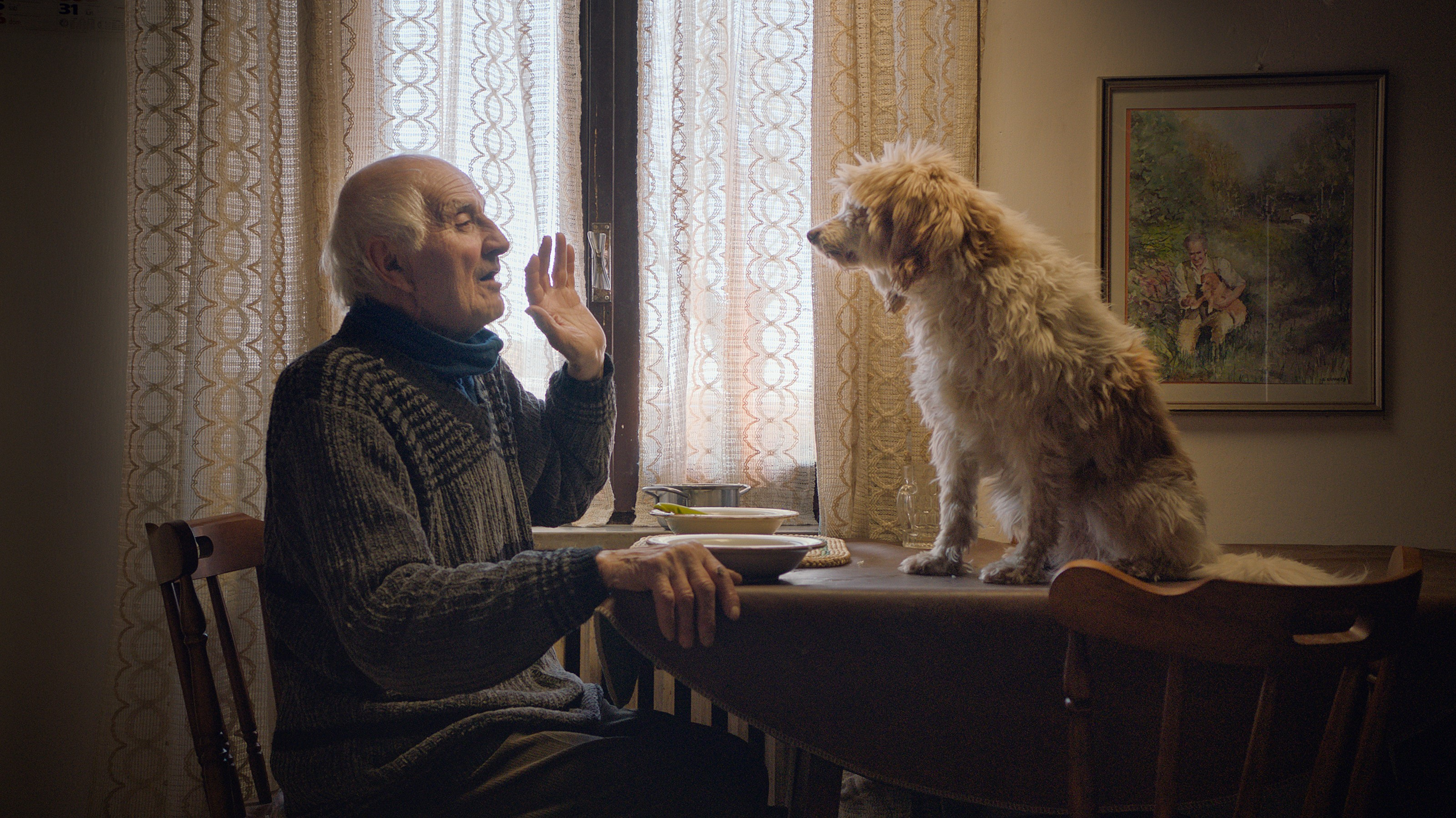 Still from the film 'The Truffle Hunters' showing a man speaking to his dog.