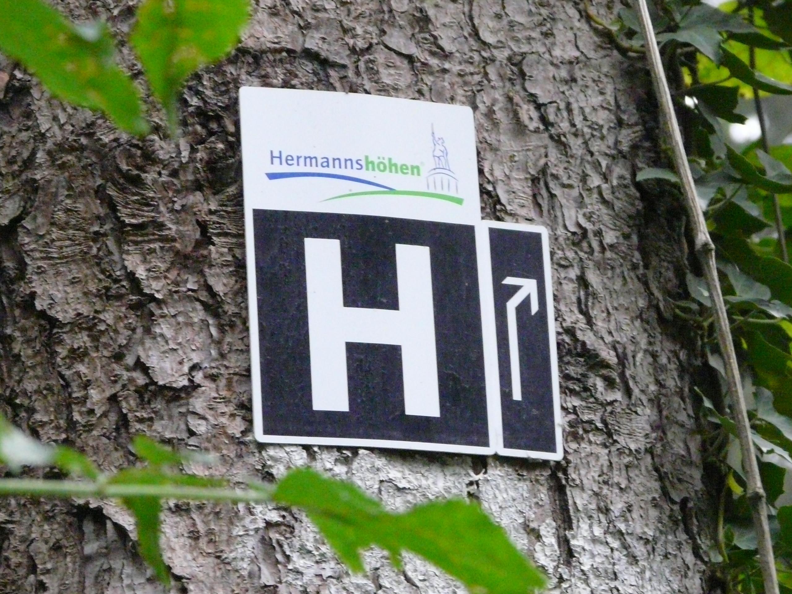 Wandelen op de Hermannsweg