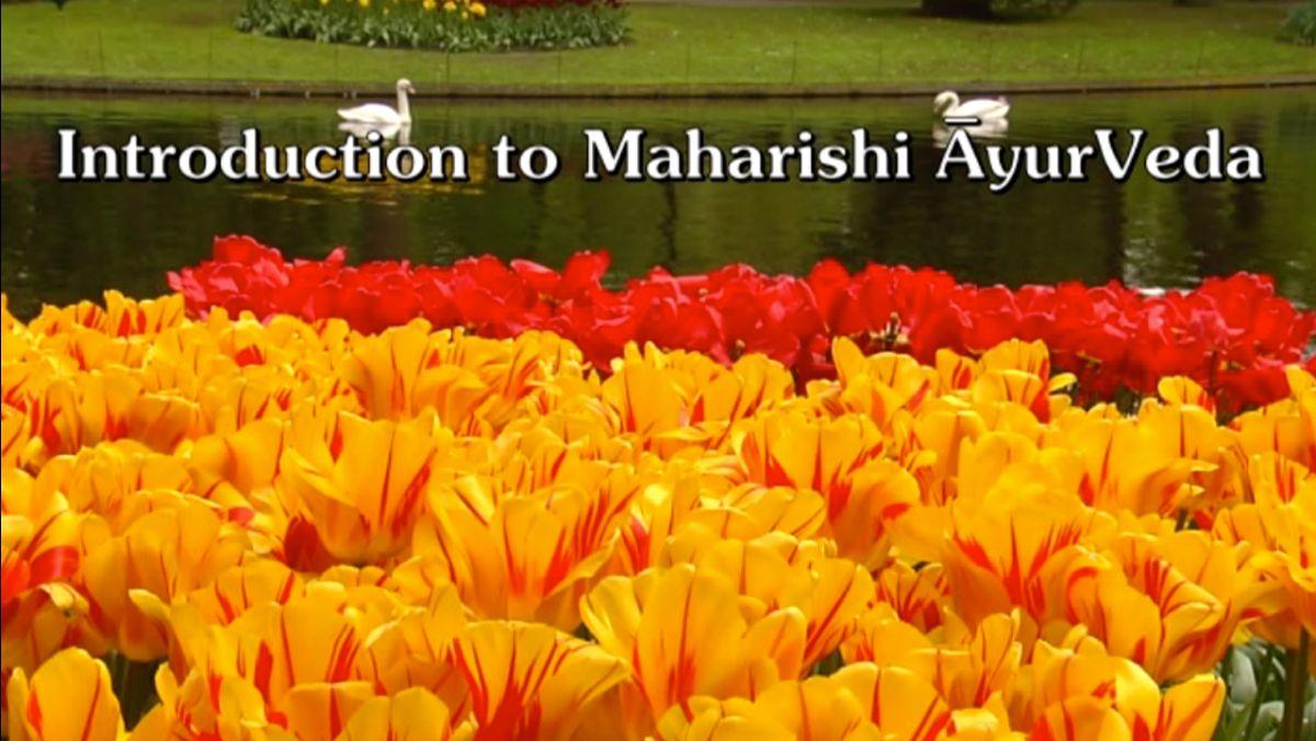 Free Course - Introduction to Maharishi AyurVeda
