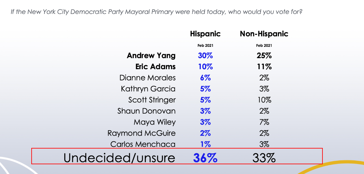 Andrew Yang  Leads  Among Hispanics  In New  Univision Poll