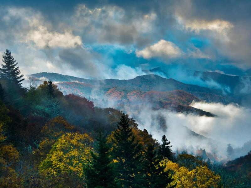A misty sunrise in Great Smoky Mountains National Park.