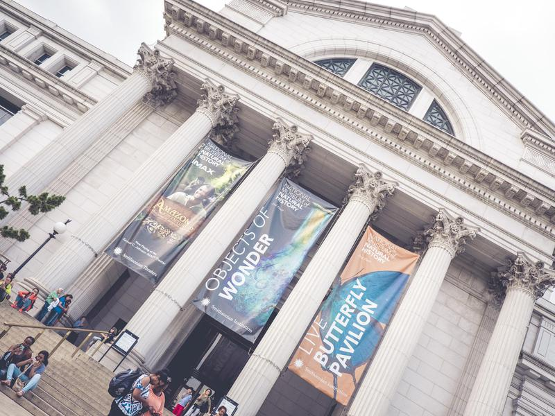 It's hard to say no to an extraordinary museum that's also free.