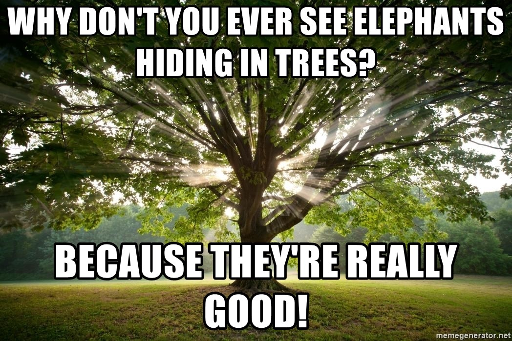 Do see elephants why you in never trees hiding 120+ Anti