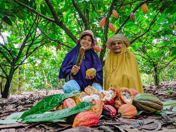 Selain mengutamakan mutu, cita rasa, dan kenyamanan, seluruh produk Van Houten Professional mengandung kakao lestari yang dipasok 100% dengan cara yang berkelanjutan melalui Cocoa Horizons Foundation, lembaga nirlaba yang dibentuk Barry Callebaut untuk memberikan dampak positif bagi komunitas petani kakao.
