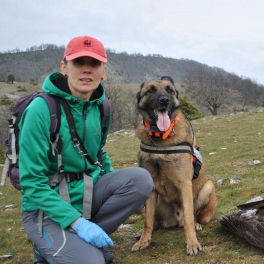 Συνέντευξη για το τελευταίο καταφύγιο γυπών στη Θράκηστην«ert.gr»