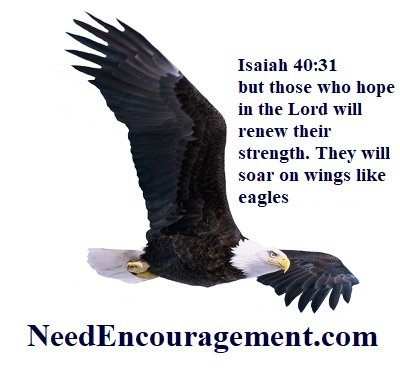 Soar on wings like eagles!