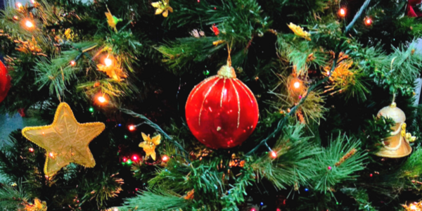 The 2020 Center for Green Schools holiday decoration guide