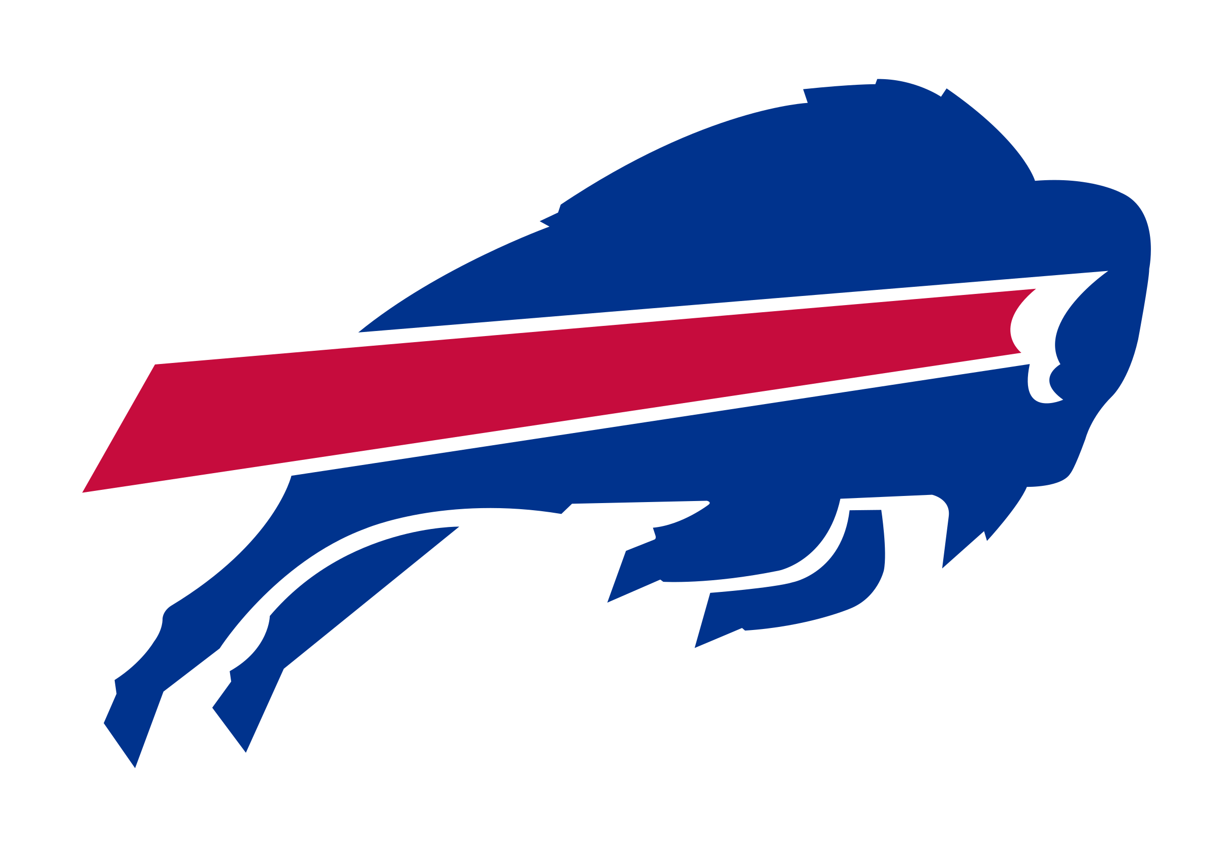Image result for buffalo bills logo