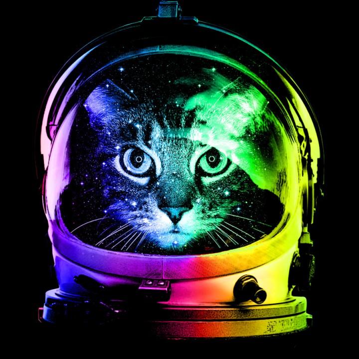 Rainbow-Astronaut-Cat