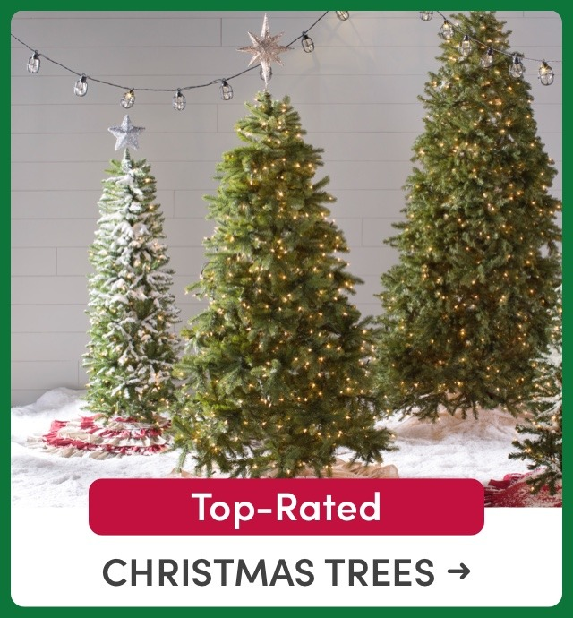 Top-Rated Christmas Trees