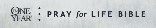 Pray for Life Bible.