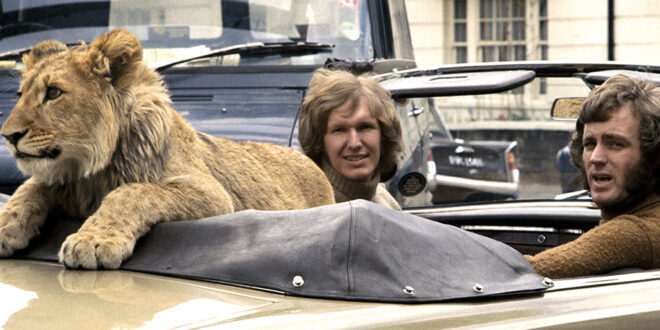 Christian the lion - Real Life True Story
