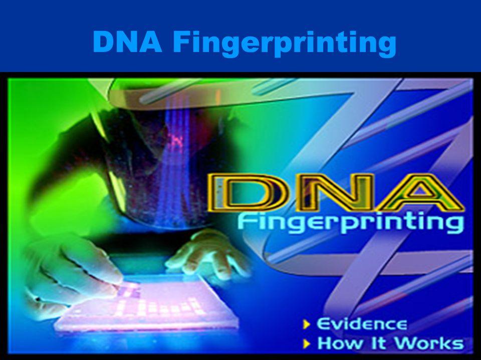 DNA Fingerprinting. - ppt video online download