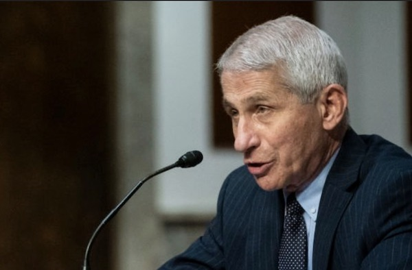 Intel Committee: Fauci Developed Bio-Weapons In China & The Likely Escaped Causing Covid!