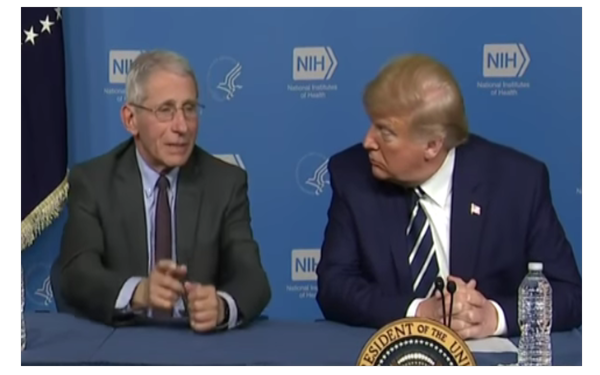 Trump Planned Presidential Commission To Publicly Question Fauci On Funding Wuhan Lab & …