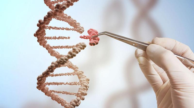 ĐCSTQ đã bắt đầu khám phá khả năng ứng dụng vào quân sự của công nghệ chỉnh sửa gen.