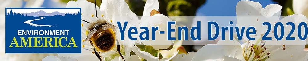 Environment America Year-End Drive