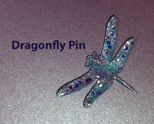 This image has an empty alt attribute; its file name is dragonflypintitle.jpg