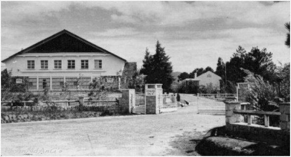 Viện Đại học Đà lạt