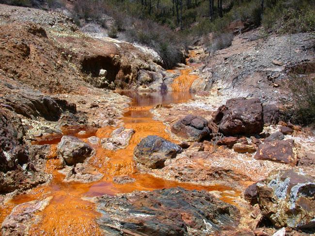 Polluted Colorado Stream