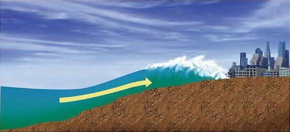 Tsunami Wave