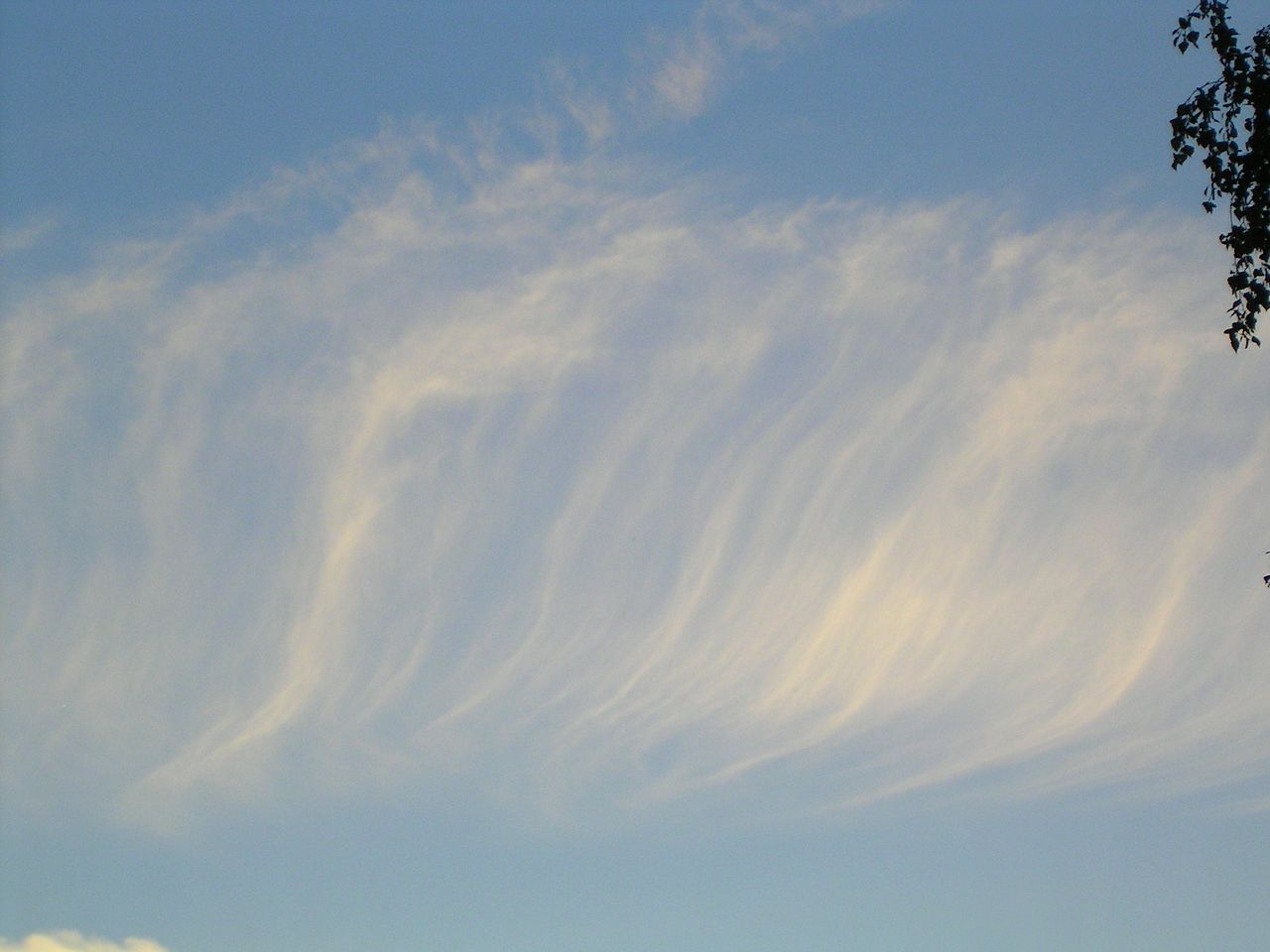 Cirus Fibratus Clouds