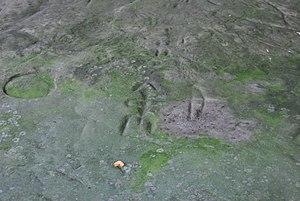 Sanilac Petroglyphs - Archer.jpg