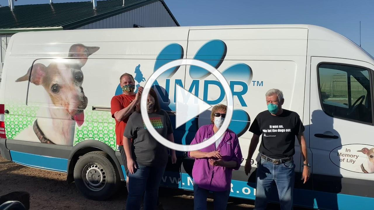 NMDR Rescue Team Heads Out in Pandemic to Save Lives of 65 Puppy Mill Rescue Dogs for Rescue Dog Day
