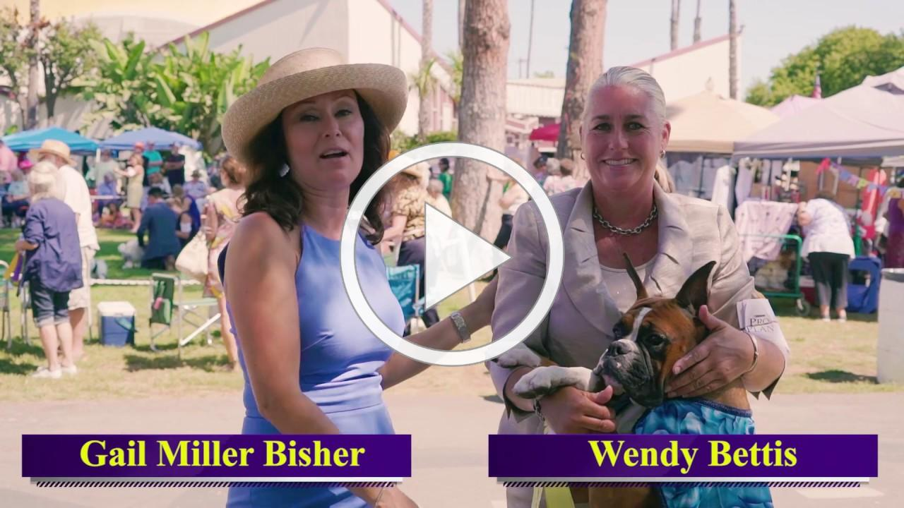 Road to Westminster (RTW): Professional Handler Wendy Bettis