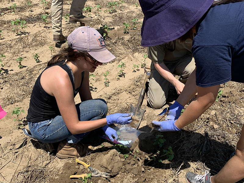Two women in a field collecting a soil sample