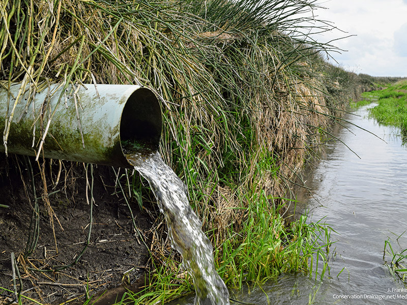 subsurface field tile draining water into a field ditch
