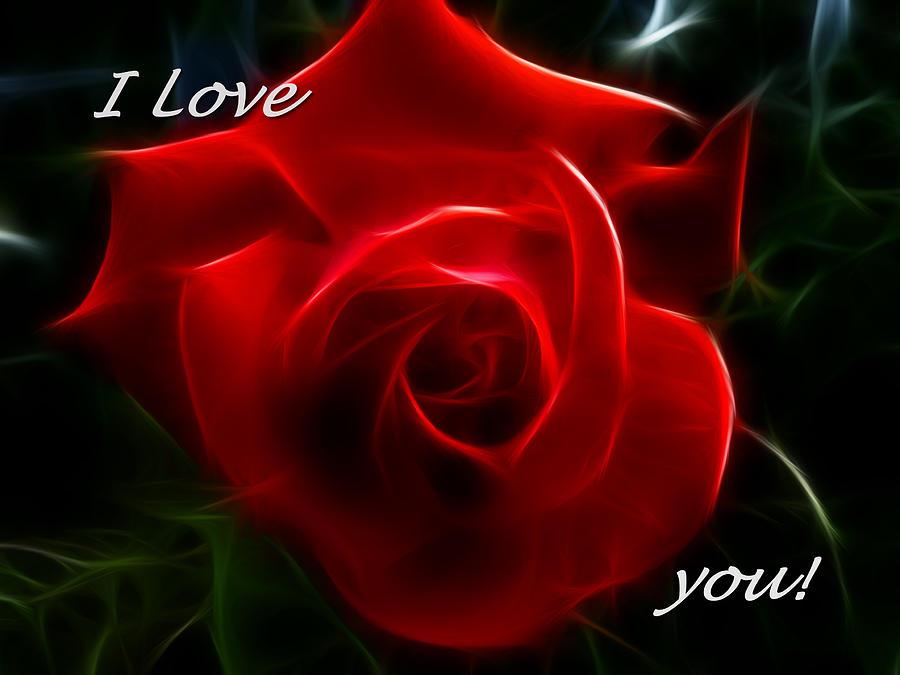 Beautiful Red Rose For Love - 900x675 Wallpaper - teahub.io
