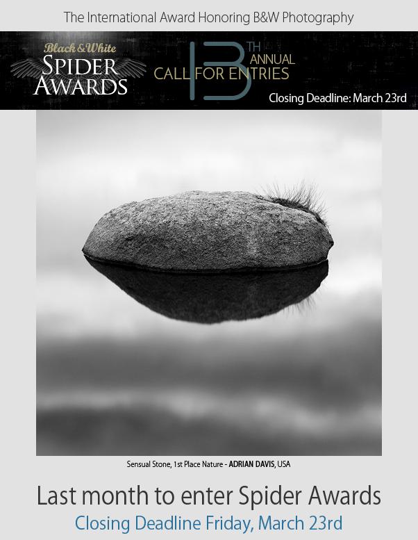 Black & White Spider Awards