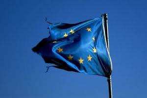 Quel programme numérique pour les 5 candidats français aux élections européennes ?